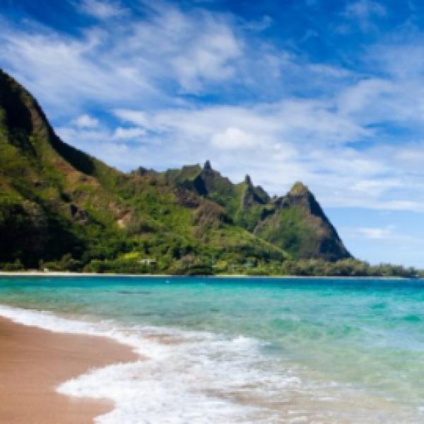 NYBG: Win a Trip to Hawaii