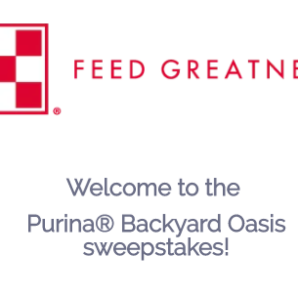 Win A 36k Backyard Makeover Sweeps Invasion